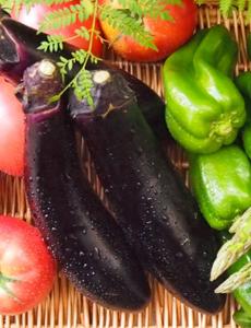 野菜販売事業